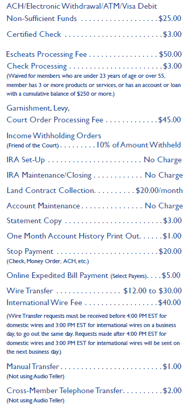 Ez payday cash loan picture 8