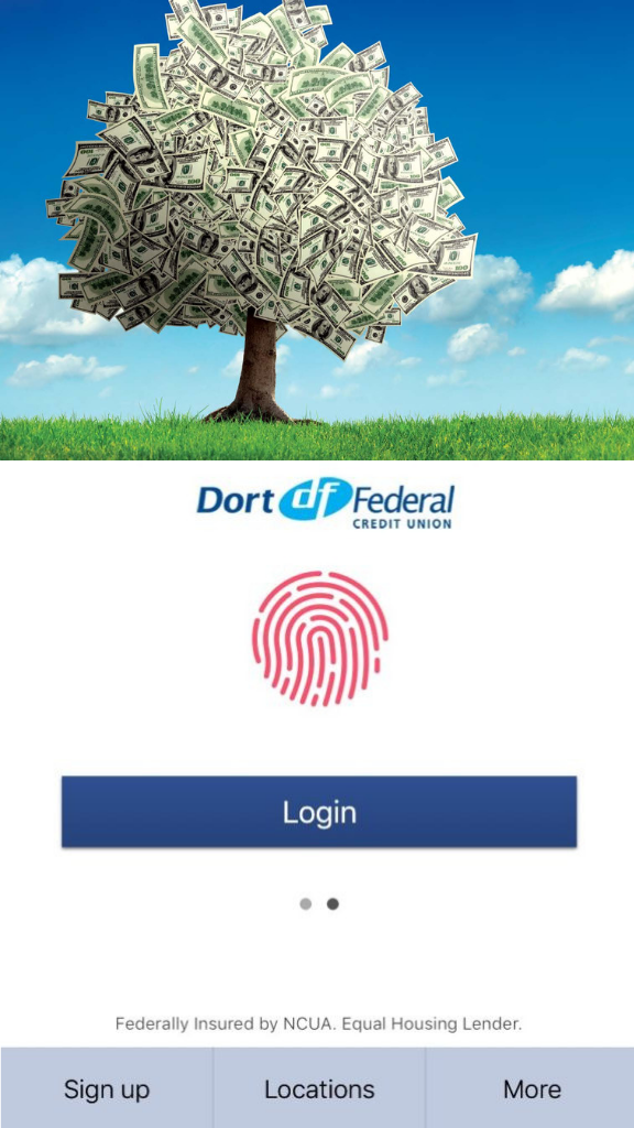 sky one federal credit union routing number